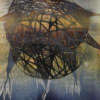 Maailma II/ World II, kohopaino/ relief print, 44x38cm, 2011